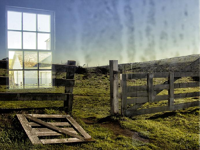 PiercePoint Dairy Reflection by Felice Willat