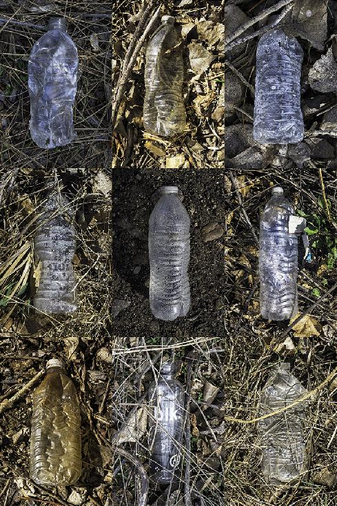 Water Bottles No. 2 by Robert Crifasi