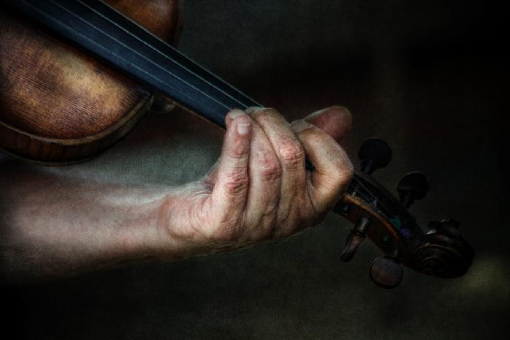 The Fiddle Player's Hands by Sue Henry